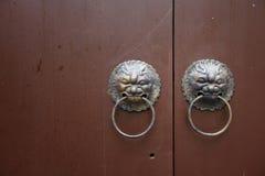 Lion door lock Stock Photography