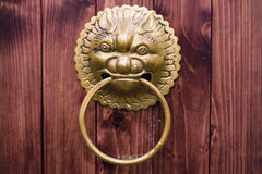 Lion door lock on brown wood Stock Photos