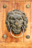 Lion door nob Royalty Free Stock Images