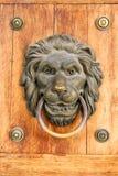 Lion door nob. Old metal lion door nob on the wooden door Royalty Free Stock Images