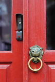 Lion doorknob Stock Image