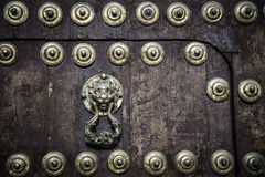Lion doorknocker Stock Photos