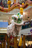 Lion and Dragon Dance Barongsai in Mall Jakarta Indonesia Stock Photos