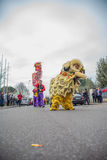 Lion and dragon Stock Photo