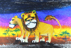 Lion drawing Stock Photography