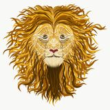 Lion, drawn by a lot of smooth lines.  Royalty Free Stock Photos