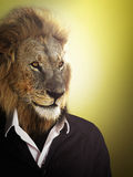 Lion dressed up with a shirt and jumper Royalty Free Stock Image