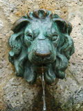 Lion effigy fountain. Characteristic tuscan fountain with oxidized bronze lion effigy royalty free stock photos