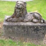 Lion en pierre Photographie stock