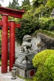 Lion en pierre dans un beau jardin chez Monte au-dessus de Funchal Madère Images libres de droits