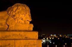 Lion en pierre et jungle urbaine photo libre de droits