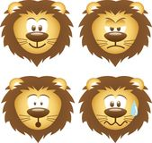 Lion expressions Stock Photos