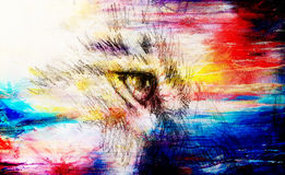 Lion eye. animal drawing on vintage paper. Color effect. Stock Photo