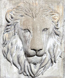 Lion face Royalty Free Stock Image