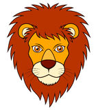 Lion face. Illustration of Lion face on white background Royalty Free Stock Photo