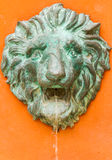 The lion face for decorate. Stock Photos