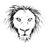 Lion face drawing illustration in black and white line art. Lion face drawing illustration in black and white line art design Stock Photos