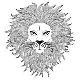 Lion Face Royalty Free Stock Photos