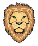 Lion Face vector Royalty Free Stock Photography
