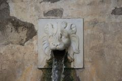 Lion face water fountain close up of the dragon channel in Bardini Garden. Florence, Italy royalty free stock photography