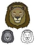 Lion Faces Stock Photos