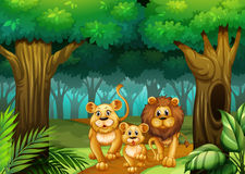 Lion family living in the forest Royalty Free Stock Image