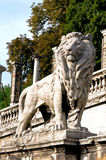 Lion figure at the root of Buda Castle in Budapest Royalty Free Stock Photos
