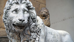 Lion in Florence. A sculpture of lion from Piazza della Signoria in Florence, Tuscany, Italy Royalty Free Stock Photos