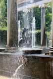 The Lion Fountain in lower garden in  Peterhof, Stock Photography