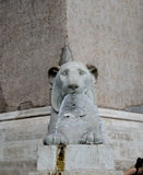 Lion fountain in Piazza del Popolo in Rome Royalty Free Stock Photos