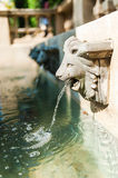 Lion Fountain royalty free stock image