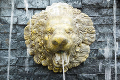Lion fountain on vintage wall Stock Images