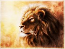 Lion Fractal , multicolor Illustration. A beautiful airbrush painting of a lion head with a majesticaly peaceful expression Royalty Free Stock Photo