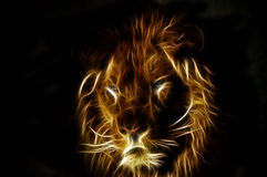 Lion Fractal Stock Photography
