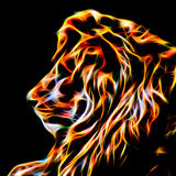 Lion In Fractal Wire Flames - värmen Within Arkivfoto