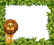A lion in front of an empty leafy frame Royalty Free Stock Photography