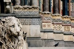 Genoa Cathedral. Lion in front of Genoa Cathedral Royalty Free Stock Photo