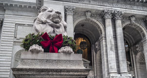 Lion in front of Library Stock Images