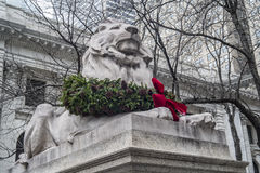 Lion in front of Library Royalty Free Stock Photography