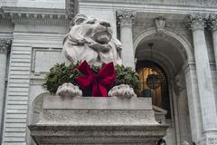 Lion in front of Library Royalty Free Stock Photos