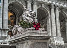 Lion in front of Library Stock Photography