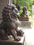Lion at front main gate. Royalty Free Stock Images