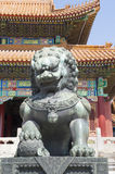 Lion in front of temple architecture stock image