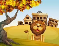 A lion in front of a wooden house. Illustration of a lion in front of a wooden house Stock Images