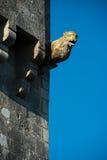 Lion Gargoyle Stock Foto's