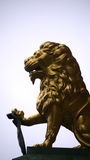 Lion of gold. Stock Photos