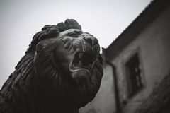 Lion grin face, statue. Horizontal view stock images