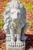 Lion gris concret dans le jardin Photographie stock libre de droits