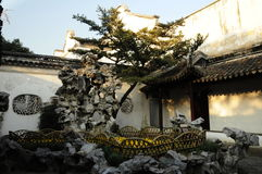 Lion Grove Garden suzhou China imagem de stock