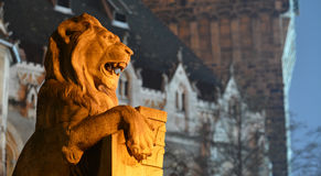 Lion guarding castle Royalty Free Stock Photo